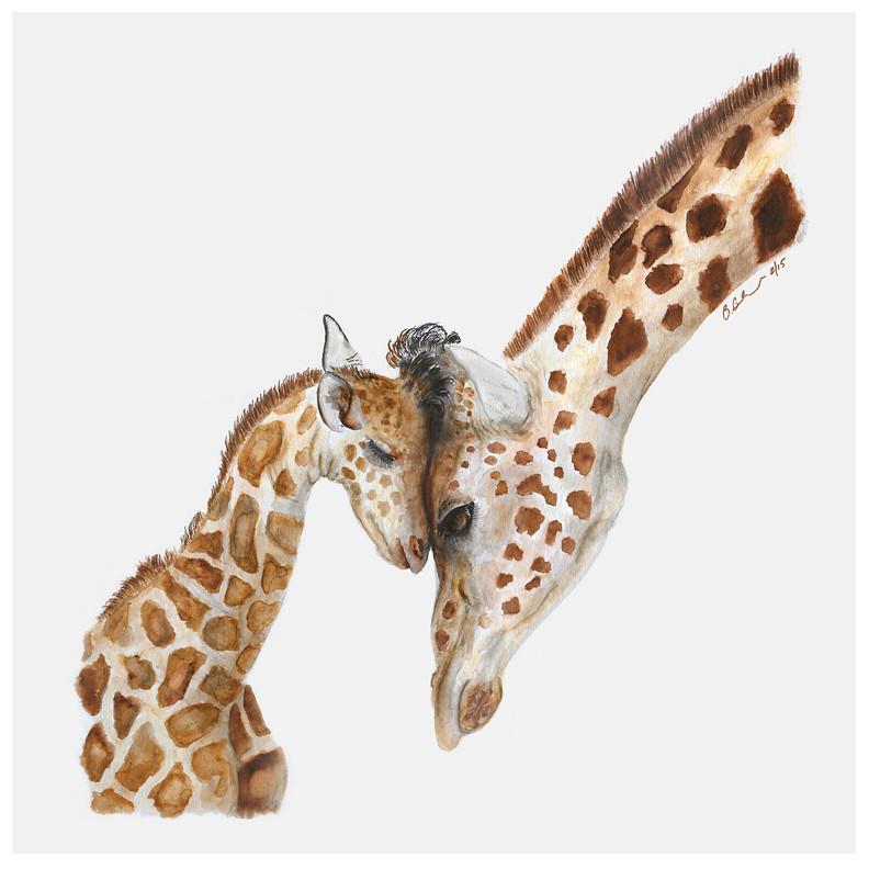 mom and baby giraffe art canvas