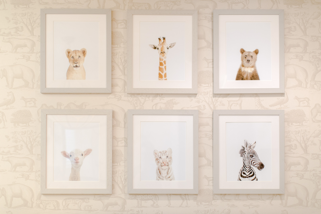 The nursery trend that just won 39 t go away little crown - Little crown interiors ...