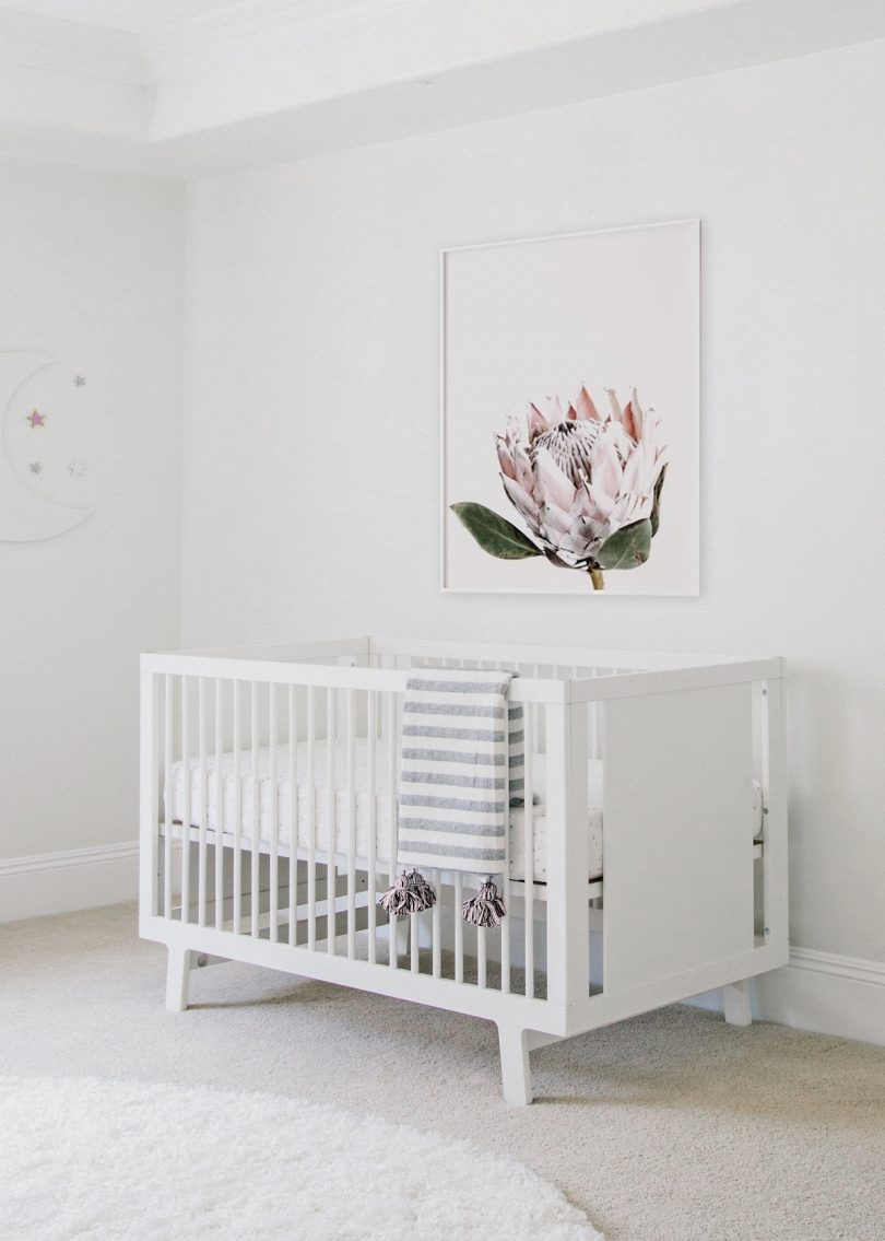 Pink Protea Floral Print | Little Crown Interiors Shop